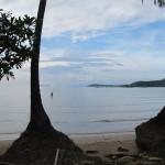 redefines beach walk