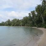 redefines beach walk 2